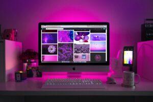 Webstránka